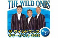 ザ・ワイルドワンズ サマーイベント2019 【 8/23(金)開催 】