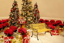 個性溢れるレストランが贈るディナーとクリスマスディスプレイ